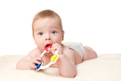Baby boy playing with rattle Stock Photography