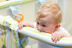 Baby boy in playpen. Cute baby boy standing in colorful playpen, biting on the edge Royalty Free Stock Photography