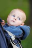 Baby boy portrait Stock Photo