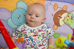 Baby boy potrait Royalty Free Stock Photos