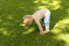 Baby boy practices yoga. Toddler is stretching. Kid boy does sport stock photos