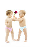 Baby boy present rose flower to baby girl. Baby boy present rose flower to a baby girl. Children wear colorful diapers: pink and blue stock photos