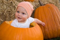 Baby boy in pumpkin. A cute little caucasian baby boy sitting in a big orange pumpkin, smiling and staring Stock Photo