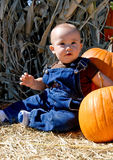 Baby boy and pumpkins Royalty Free Stock Photo