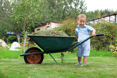 Baby boy pushing a wheelbarrow in garden Royalty Free Stock Photography
