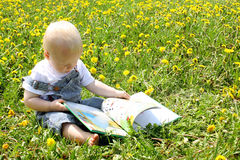 Baby Boy reading book in dandelions Royalty Free Stock Image