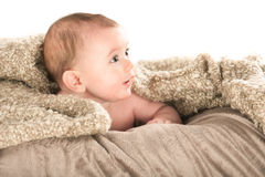 Baby on white background Royalty Free Stock Images