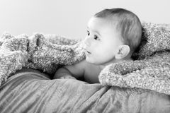 Baby on the blanket stock images