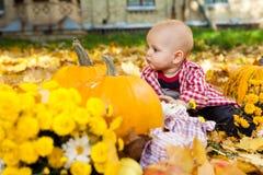 Baby boy in red shirt sitting among pumpkins in autumn garden Stock Photo