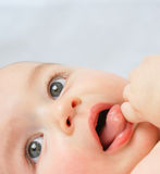 Baby boy's face Royalty Free Stock Photography