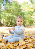 Baby boy sitting in autumn leaves Royalty Free Stock Images