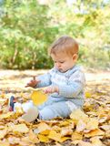 Baby boy sitting in autumn leaves Stock Images