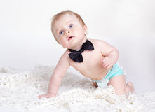 Baby boy sitting with bow tie Stock Photos