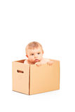 Baby boy sitting in a cardboard box Royalty Free Stock Images