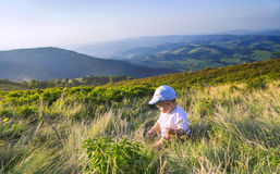 Little baby playing with grass in the mountains in summer. Baby boy sitting in the grass. Beautiful mountains landscape Stock Photos