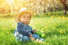 Baby boy sitting on the grass with dandelion flowers in the garden Stock Photos