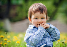 Baby boy sitting on the grass in field Royalty Free Stock Photos