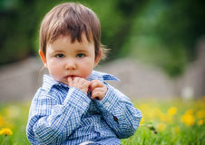 Baby boy sitting on the grass in field Royalty Free Stock Images