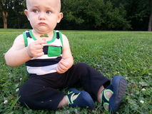 Baby Boy Sitting in Grass Holding a Clover Royalty Free Stock Photo