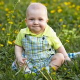 Baby boy sitting on green grass Royalty Free Stock Photography
