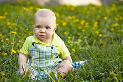 Baby boy sitting on green grass Royalty Free Stock Image