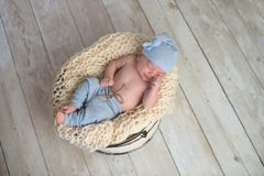 Baby Boy Sleeping in a Bucket Stock Photography
