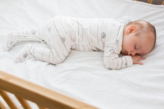 Baby boy sleeping on a cradle. At home Royalty Free Stock Photo
