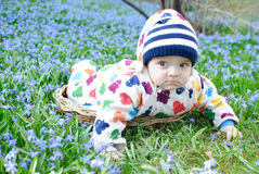 Baby boy snowdrops field Stock Photos