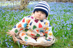 Baby boy snowdrops field Royalty Free Stock Image