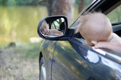 Baby boy son a little driver Royalty Free Stock Images