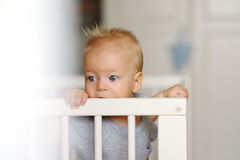 Baby boy standing in crib Royalty Free Stock Photography