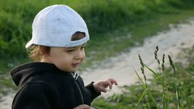 Baby boy standing with dandelion in a green field in summer. In a jacket and cap stock video