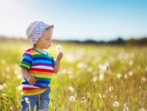 Baby boy standing in grass on the fieald with dandelions stock photography