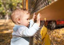 Baby boy standing near metal fence in autumn yard Royalty Free Stock Photo