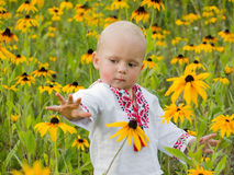 Baby boy staying in the field of flowers Royalty Free Stock Photo