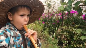Baby boy in straw hat trying to play on wooden music instrument in green garden. Little cute boy enjoying to play on flute, close stock video