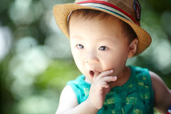 Baby boy  in summer Stock Images