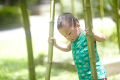 Baby boy  in summer Royalty Free Stock Images