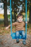 Baby boy swinging in autumn park royalty free stock image