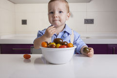 Baby boy tasting ripe colorful cherry tomatoe. Education on healthy nutrition for children concept Stock Images