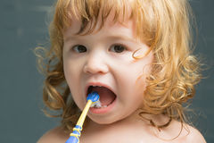 Baby boy with teeth brush royalty free stock photo