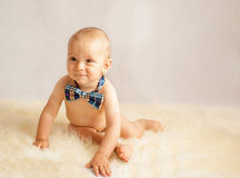 Baby boy with a tie Stock Image