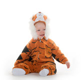 Baby boy in tiger costume. Cute 18-month-old baby boy in a tiger costume for Halloween on white background royalty free stock image