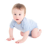 Baby boy toddler crawling isolated on white Stock Photography