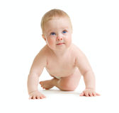 Baby boy toddler isolated trying to stand up Royalty Free Stock Photos