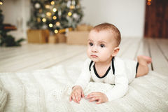 Baby boy in toddler on wooden floor over Xmas tree Royalty Free Stock Image