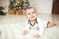 Baby boy in toddler on wooden floor over Xmas tree Stock Image