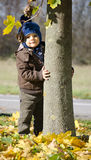 Baby boy and tree fall Royalty Free Stock Photography