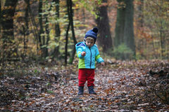 Baby boy walking through the autumn forest Stock Photos