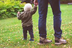 Baby boy walking in the park royalty free stock photo